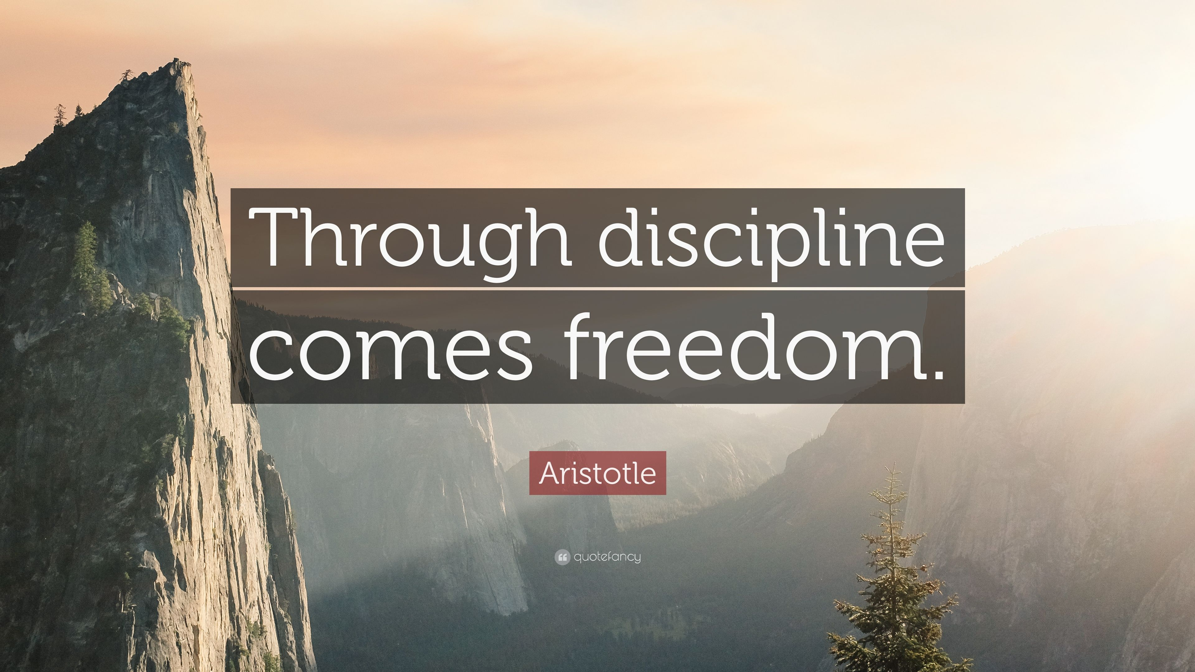 32 Best Images About Aristotle Quotes On Pinterest: Quotefancy.com Media Wallpaper 3840x2160 23395-Aristotle
