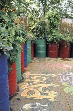 Oil Drum Herb Garden Google Search Repurposed Barrel