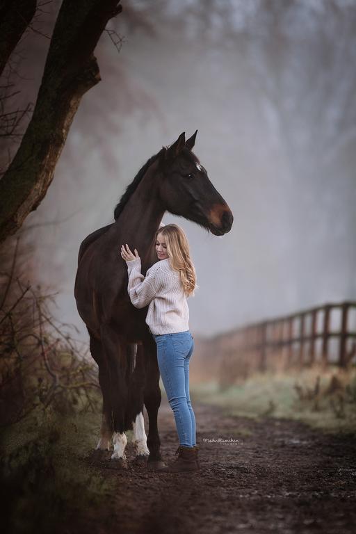 Sonnenaufgangsshooting mit Pferd, Nebelshooting im Winter mit Pferd, Dressurpferd im Sonnenaufgang, Pferdefotogafie im Morgenlicht