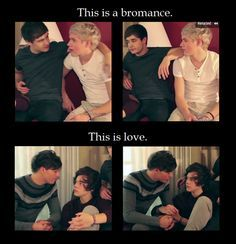 I don't understand why people can't see that. I ship Narry, but just as a bromance because that is what they are. But Louis and Harry on the other hand...that is love and if you can't see that then you need glasses or something because you are blind.