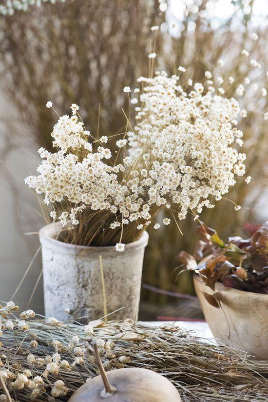 Decorez Avec Des Bouquets De Fleurs Sechees Bouquet De Fleurs
