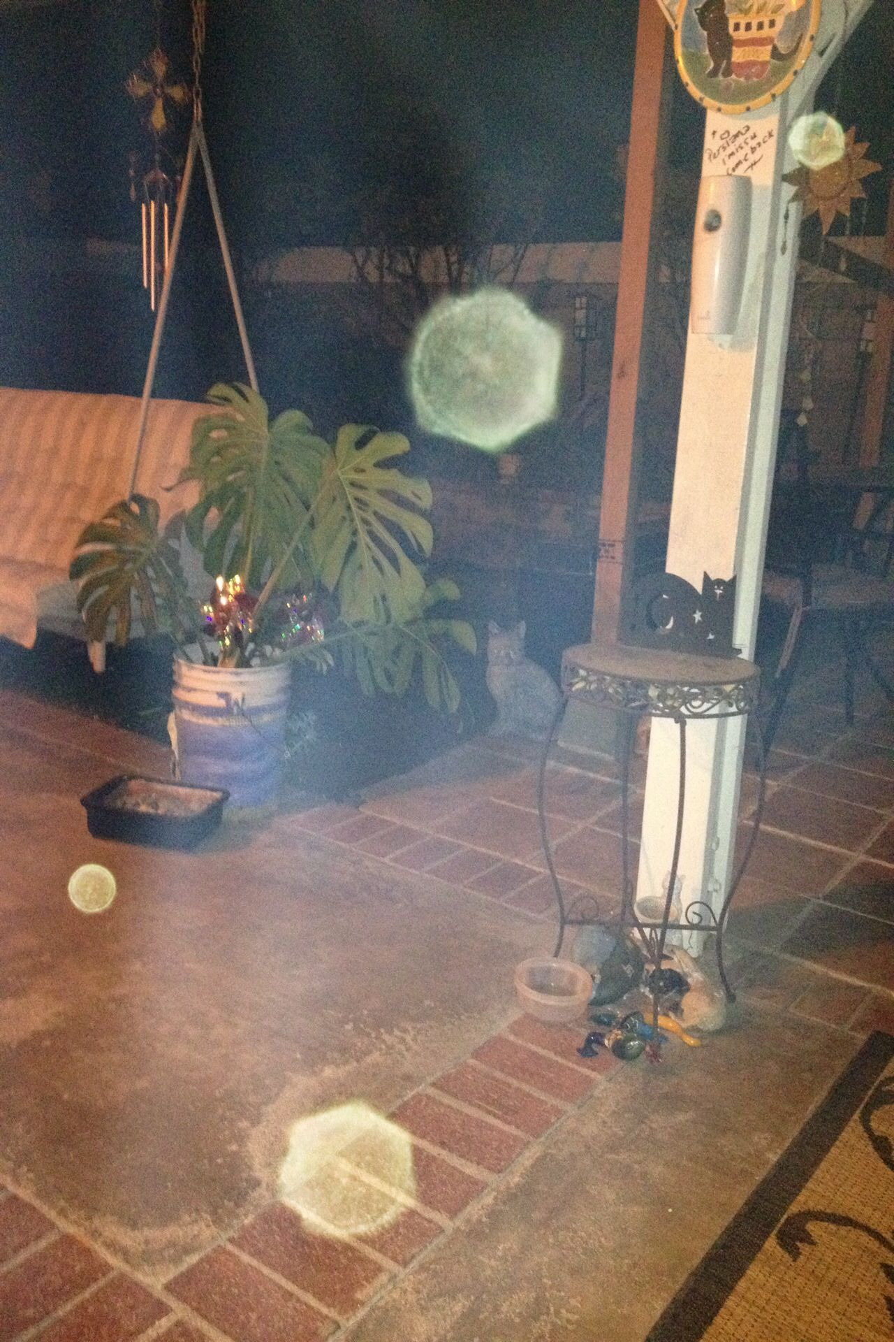 My Cam Caught These Orbs And Mist In My Backyard