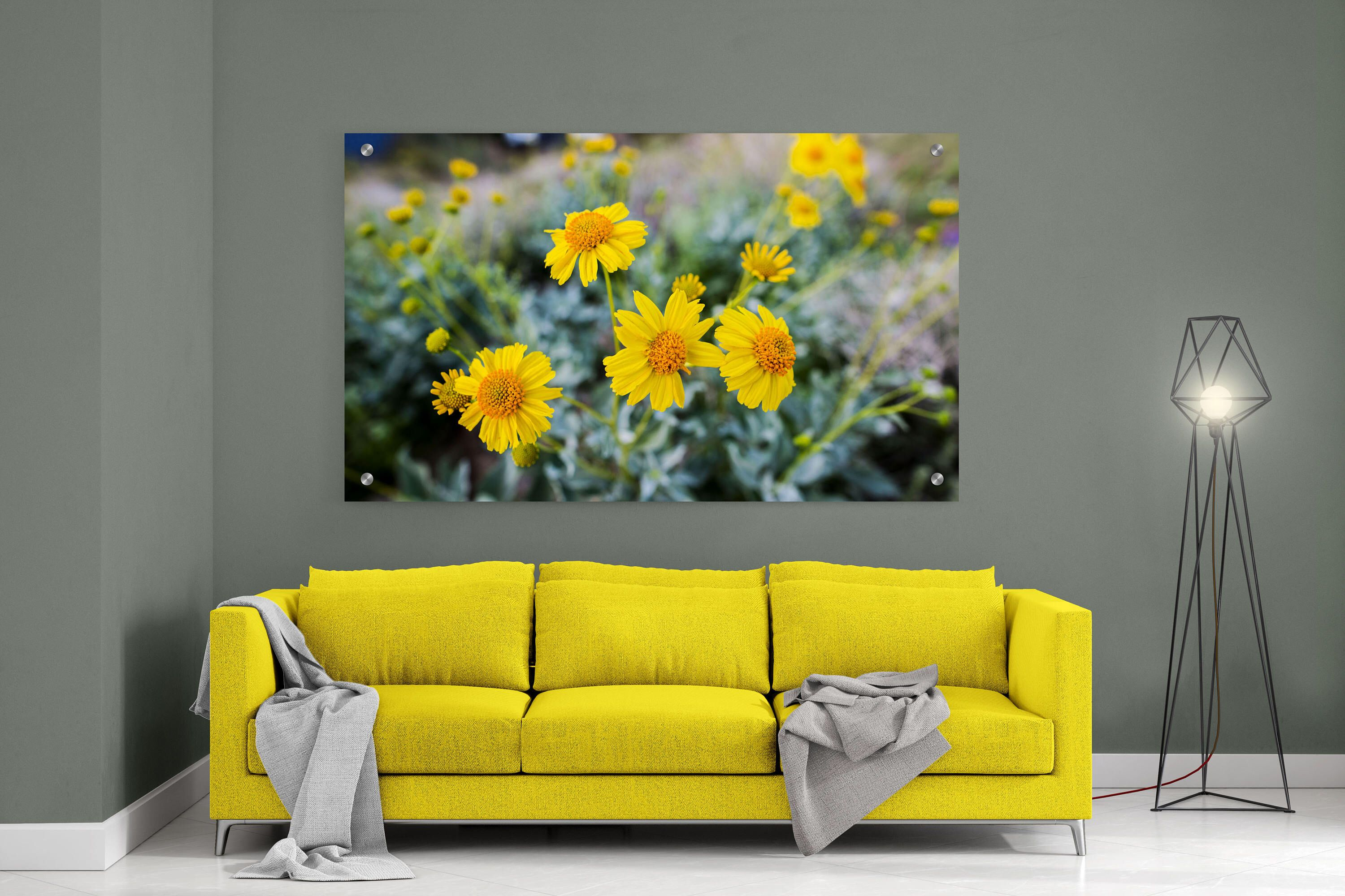 Metal Wall print, Yellow Flowers, Bloom field, Glass wall print ...
