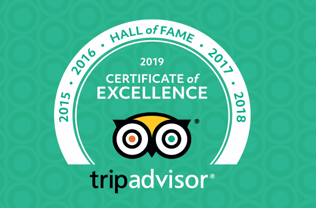 We're so excited to announce that we are in TripAdvisor's