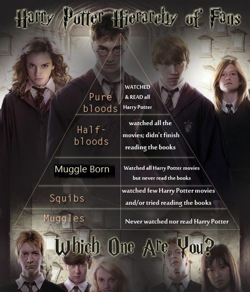 I think the half-blood one should be haven't watched all the movies but has reads all the books
