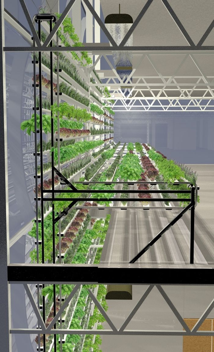 Vertical Farm Can Make 44 000 Pounds Of Tomatoes On The