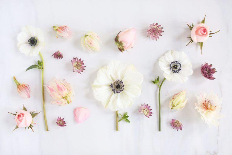 Floral Wallpaper For Desktop Flower Desktop Wallpaper Floral Wallpaper Desktop Spring Desktop Wallpaper