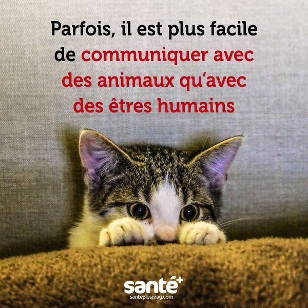 Relativ cool Citation - #citations #vie #amour #couple #amitié #bonheur  RH73
