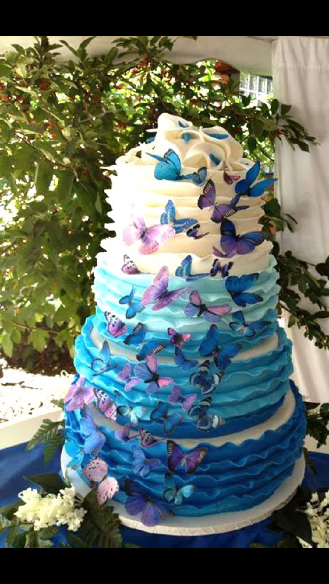 purple teal wedding cake Wedding ideas