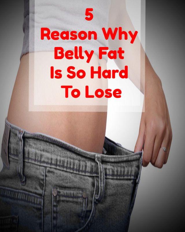 lose weight program online free