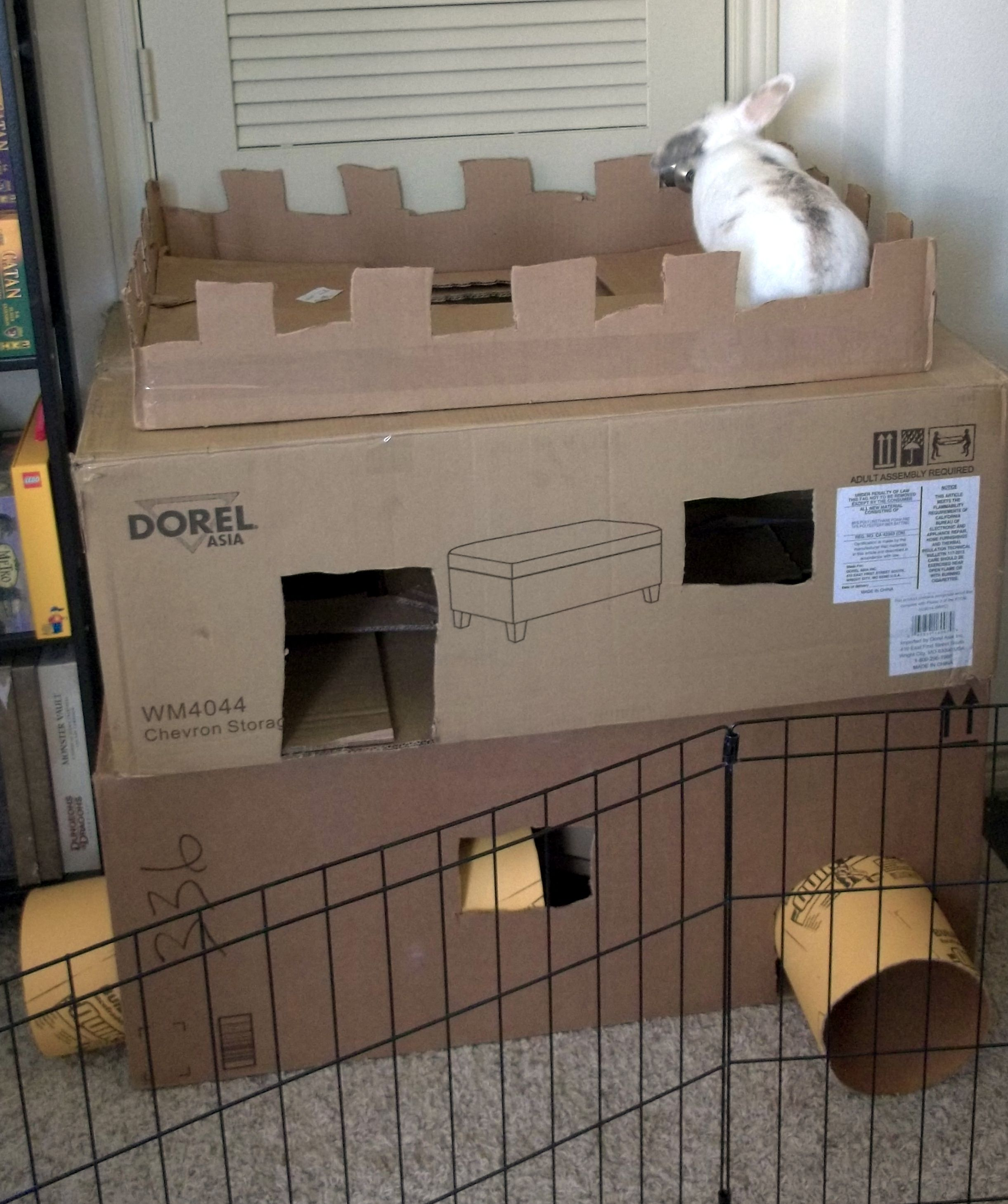 New Cardboard Castle For Radar Bunny!