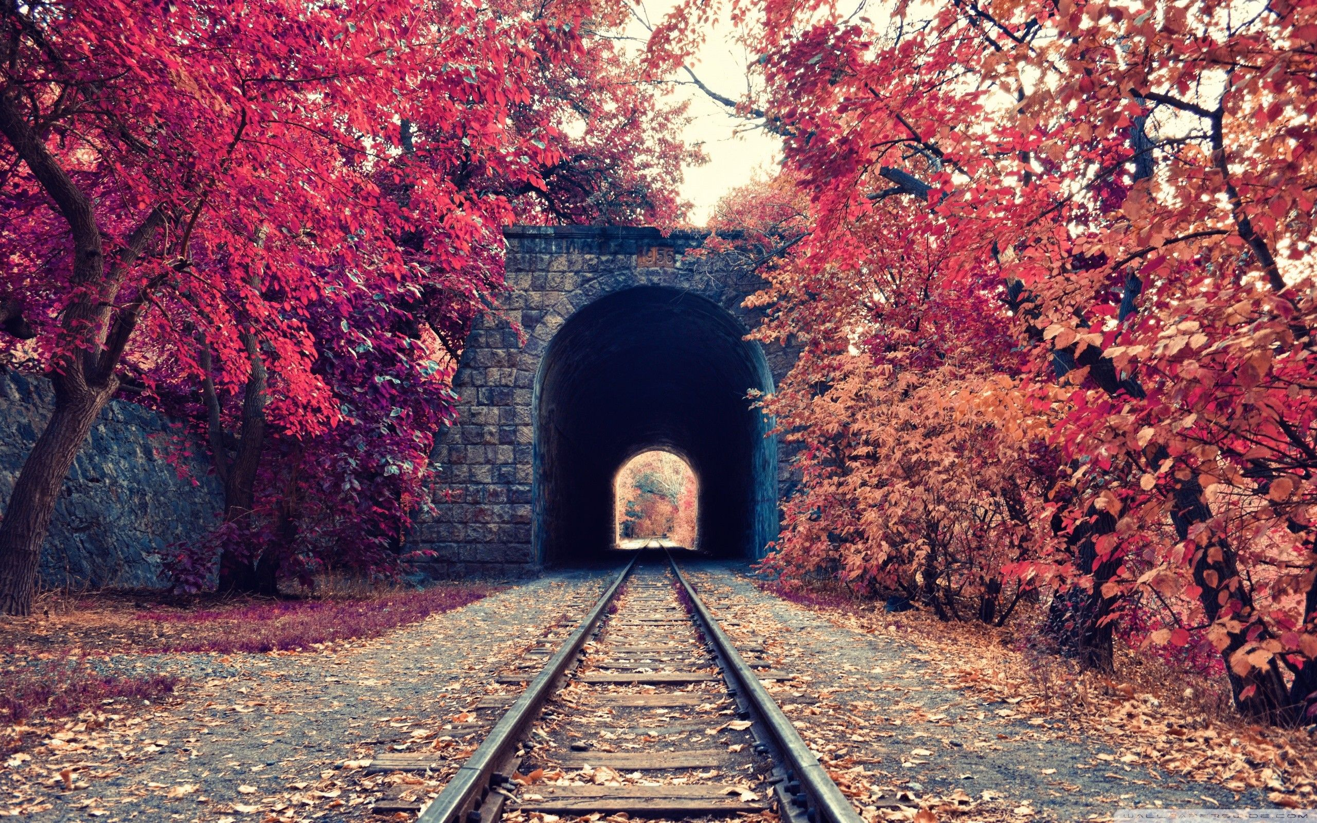 Fall Tunnels Railways Trees Armenia Wallpaper No