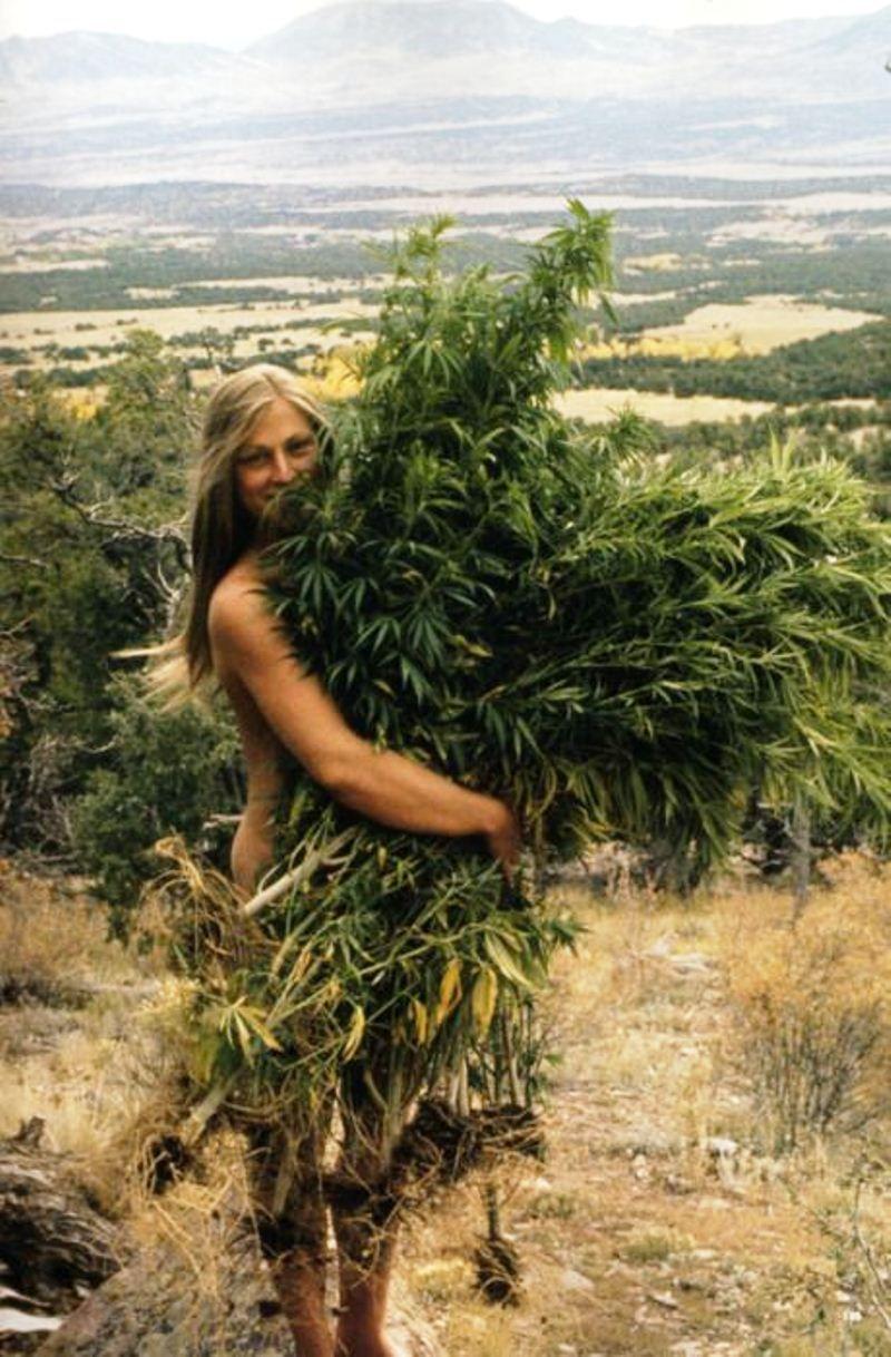 Sexy naked women with marijuana