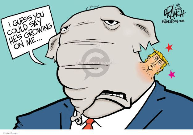 The Election Comics And Cartoons | The Cartoonist Group