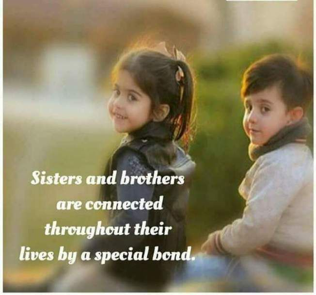 Brothers And Sisters Separated By Distance Joined By Love Sister Quotes Big Brother Quotes Best Brother Quotes