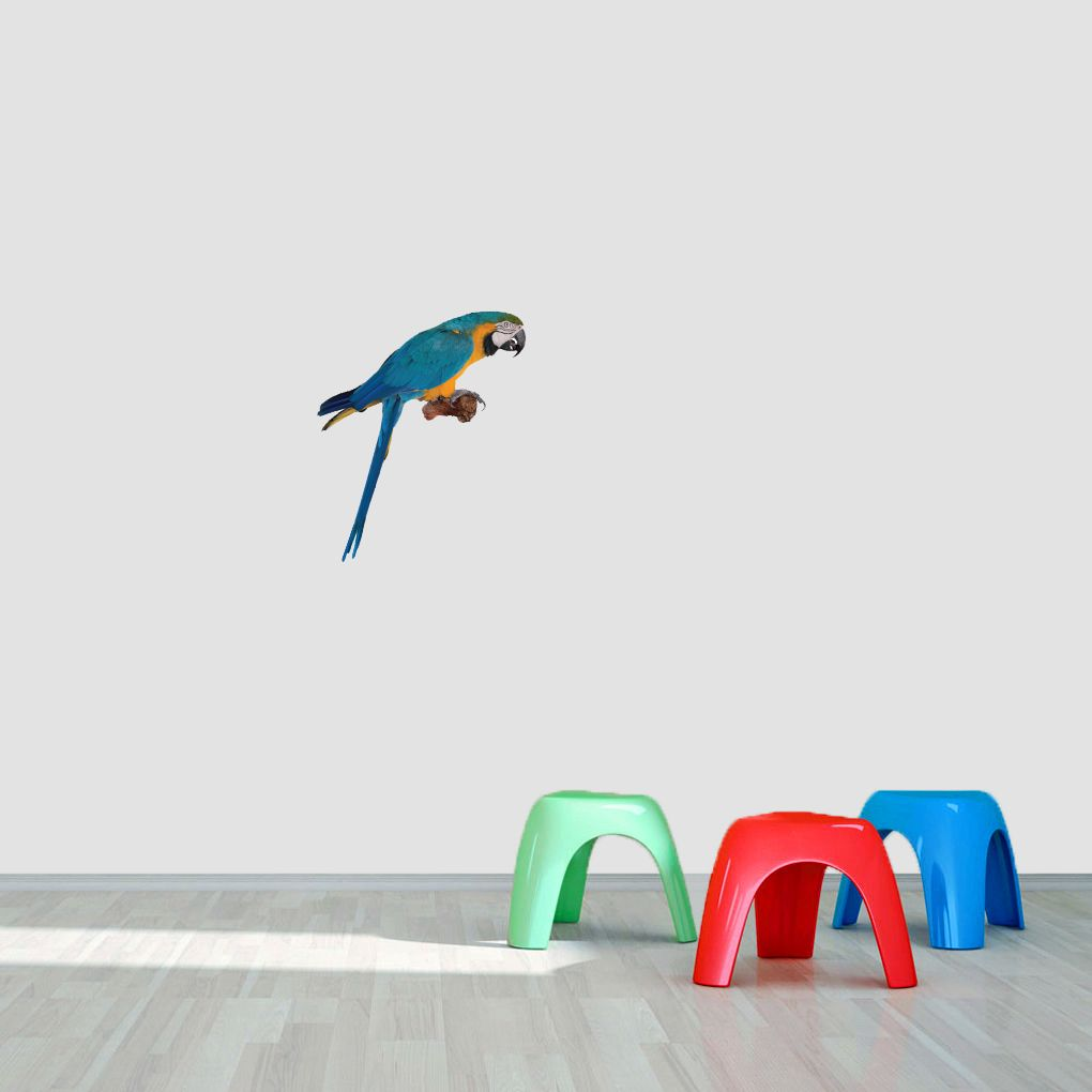 Real Life Parrot Printed Wall Decal Home Décor Wall Decals