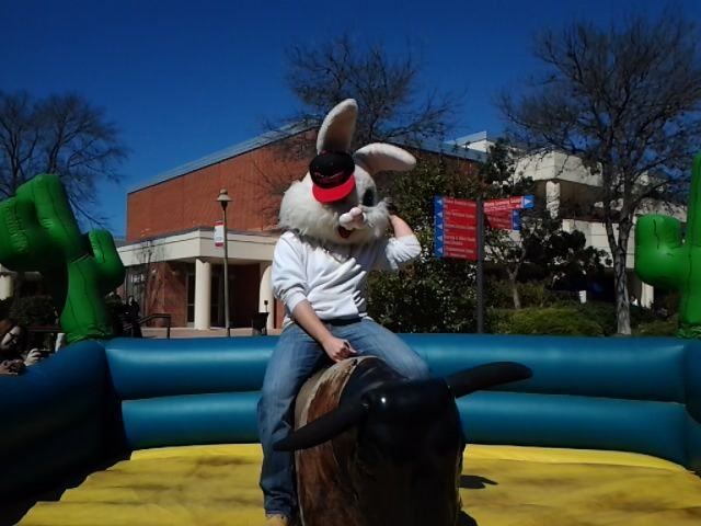 Mechanical Bull Ride Texas Style Ask About Our Mechanical Bull Rental Today Www Parties Promotional Products Marketing Bounce House Parties Event Specialist