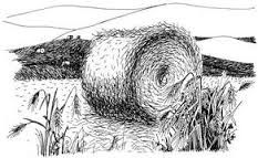 Image result for copyright free drawing of basket of brown farm eggs
