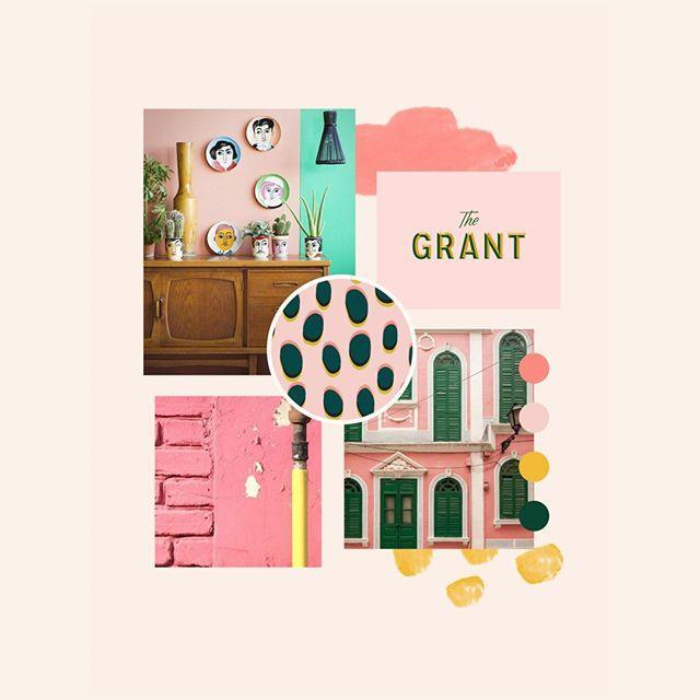Branding & Website Design Portfolio   Gatto
