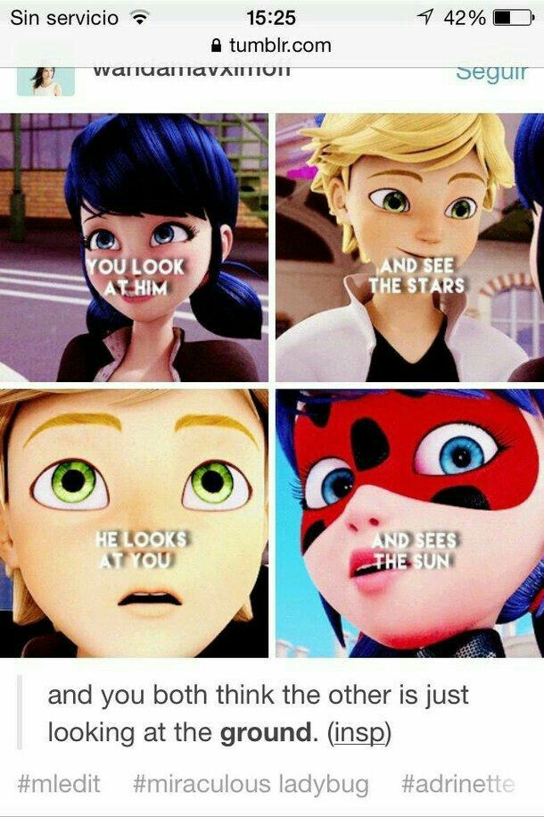 Oblivious Little Children Oh When Will You Figure Out Your Love For Each Other So I Can Live Peace Miraculous Ladybug Memes Ladybug Miraculous Ladybug Comic