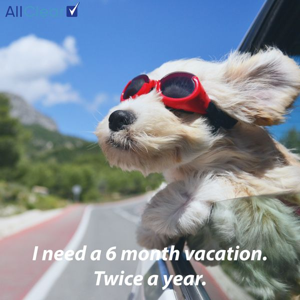 Travel Quote Of The Week I Need A 6 Month Vacation Twice A Year Cute Animals Cute Dogs Dog Friends