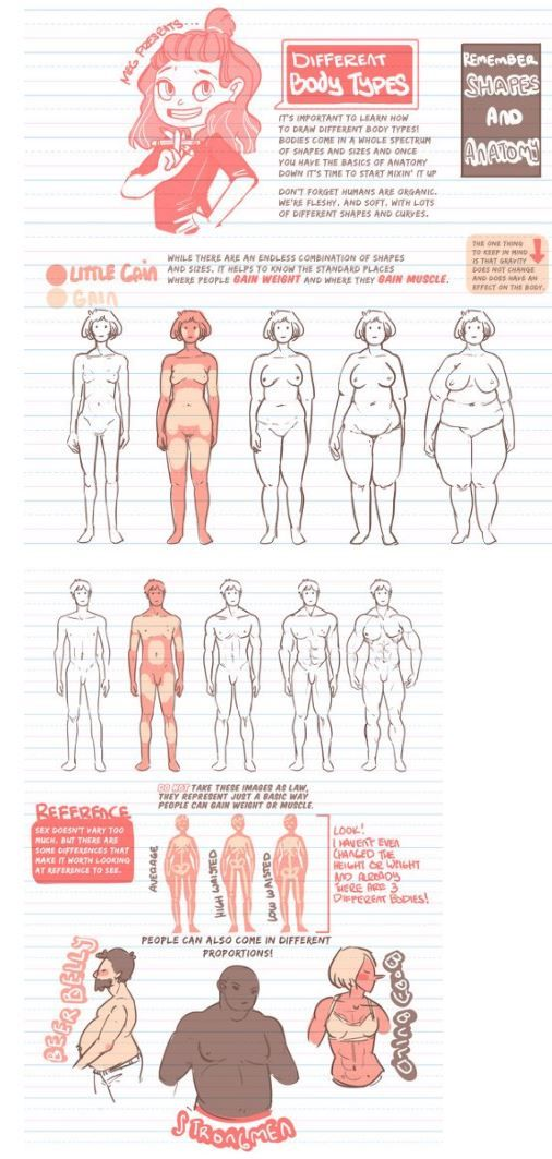 Body Types In 2019 Art Reference Drawing Proportions