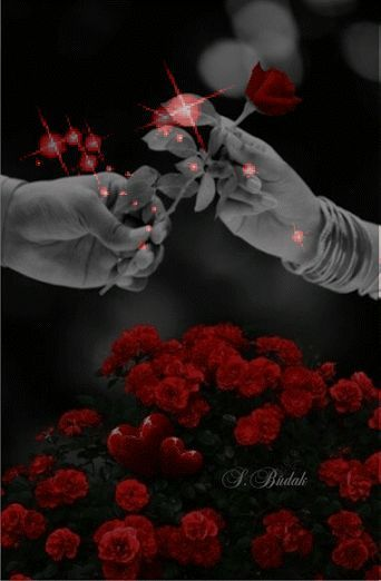 Mensagens e gifs românticas: A estrela do universo...