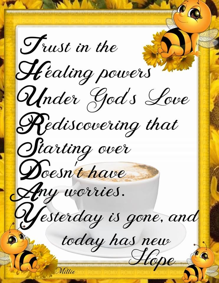 Thursday Spiritual Inspirations Wonderful Day Quotes Bee Quotes Monday Humor Quotes