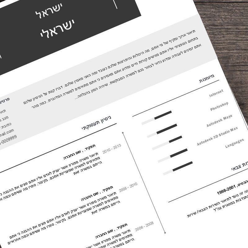 Pin by galit on Resume Pinterest Professional resume - resume templates for word 2013