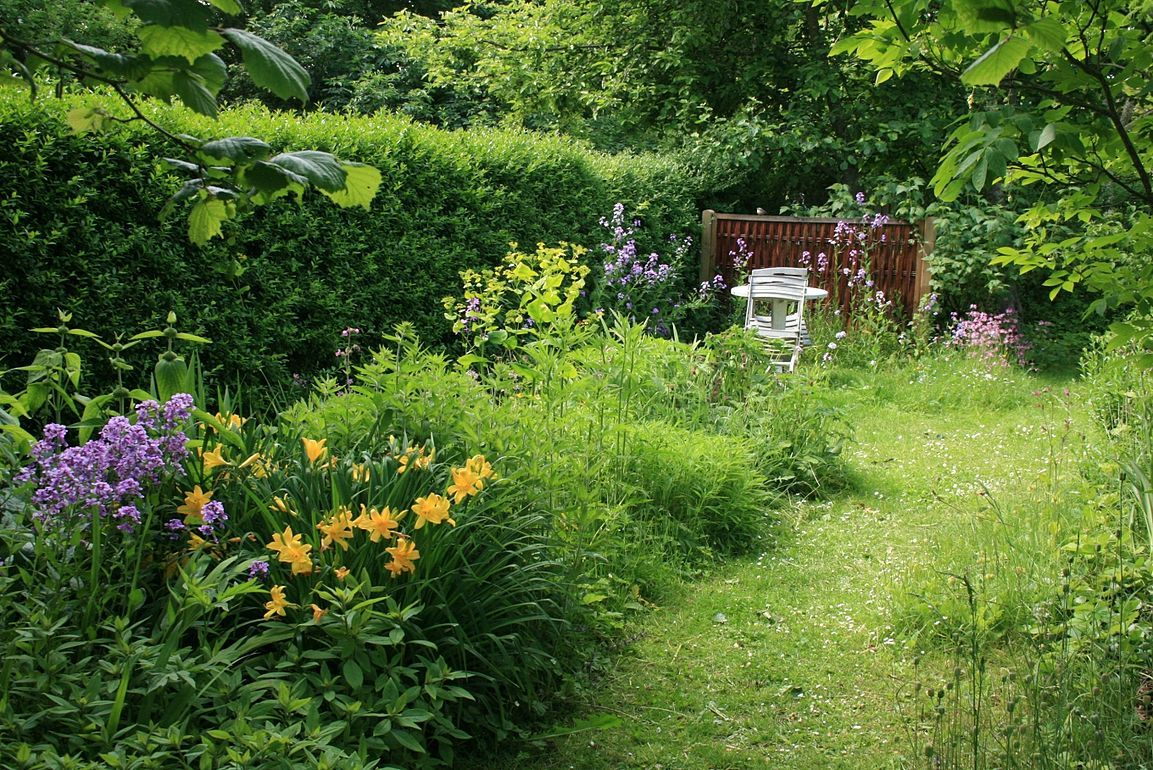 Wild garden  Country cottage garden, Summer house garden, Outdoor