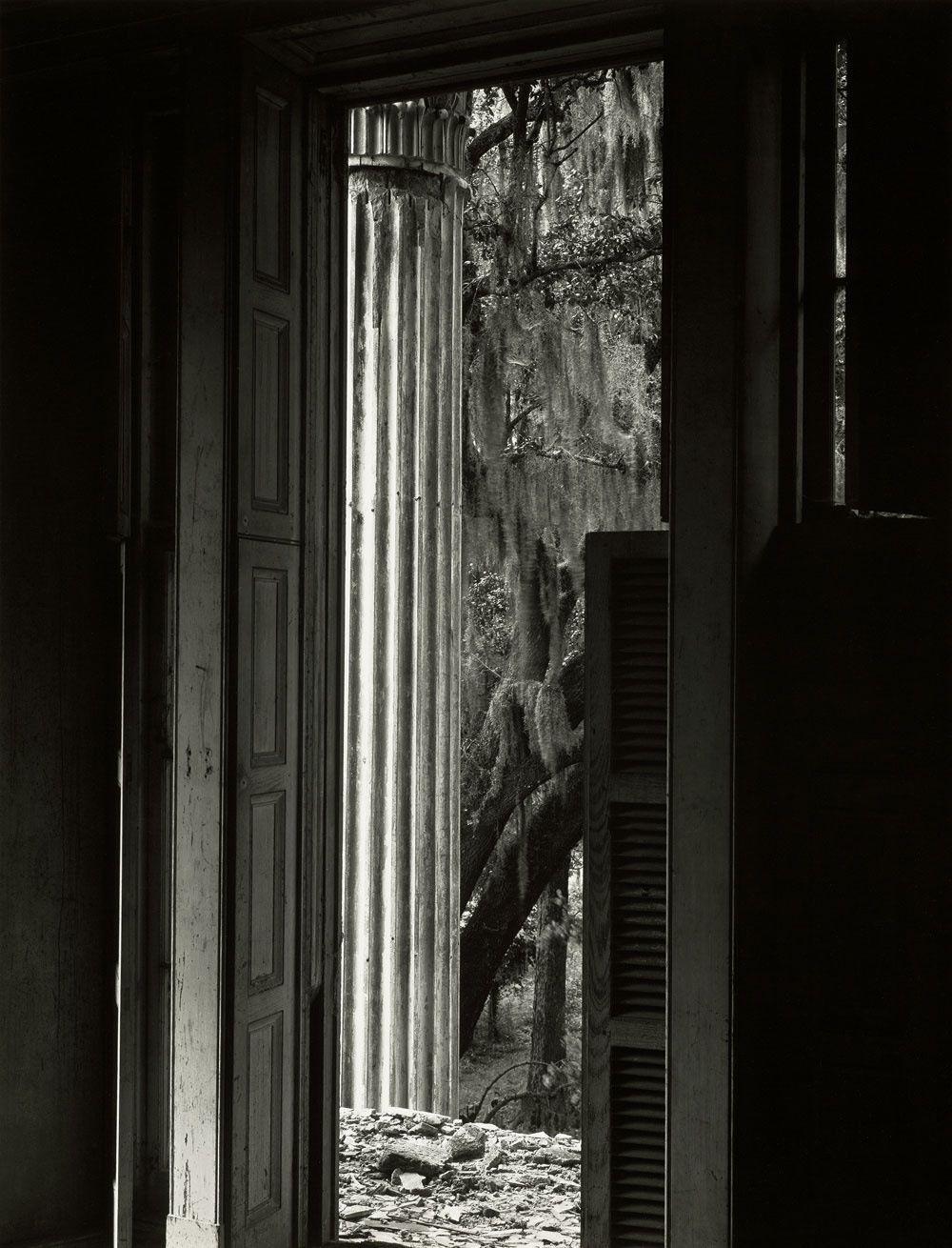 Bell Grove Plantation. Louisiana. Edward weston