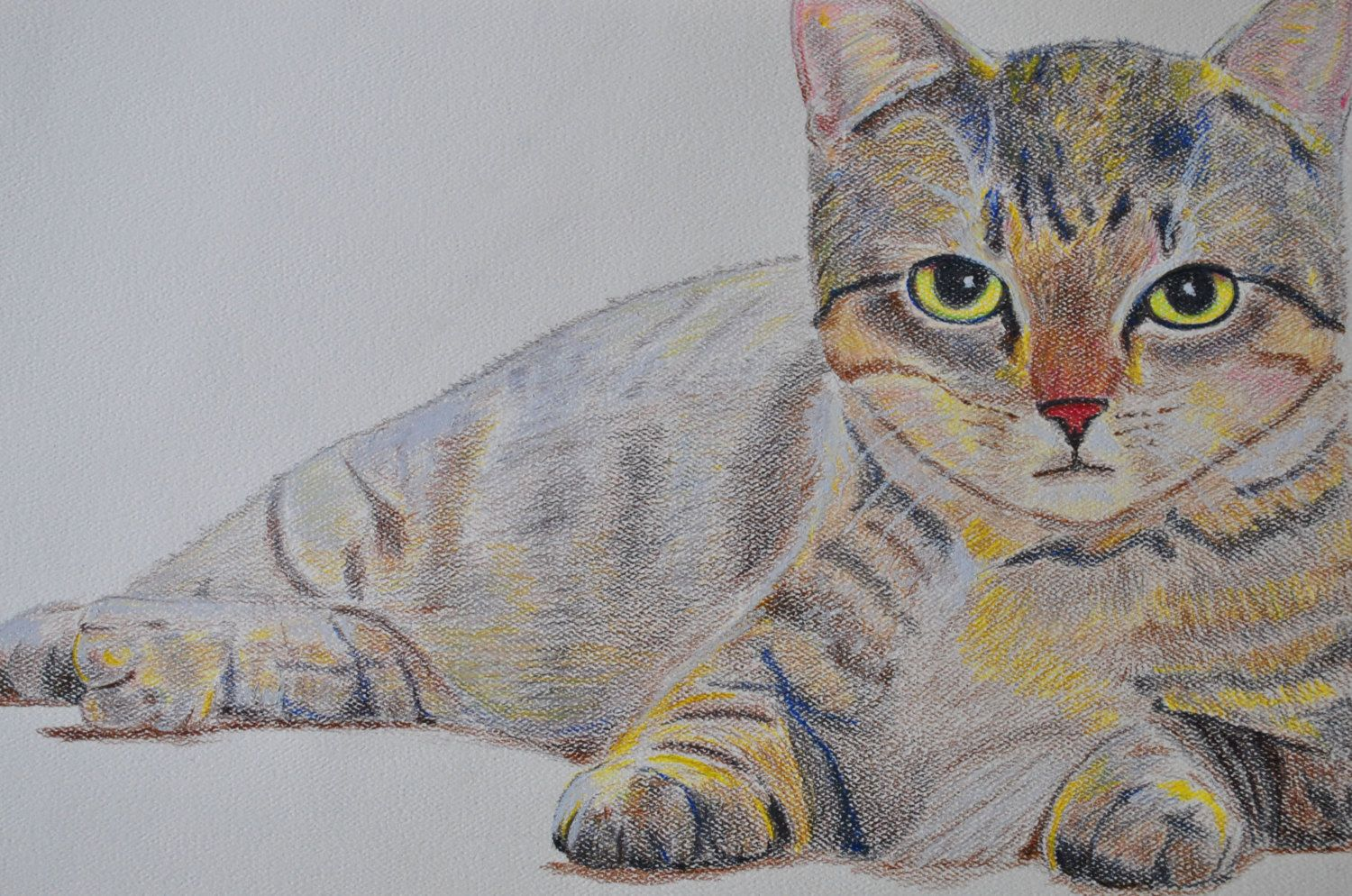 Cute Kitten Original Drawing Illustration 13x20 Inches Done In Coloured Pencil Earth Tone Shades Perfect For Animal Lo Cat Artwork Cat Portraits Cat Sketch