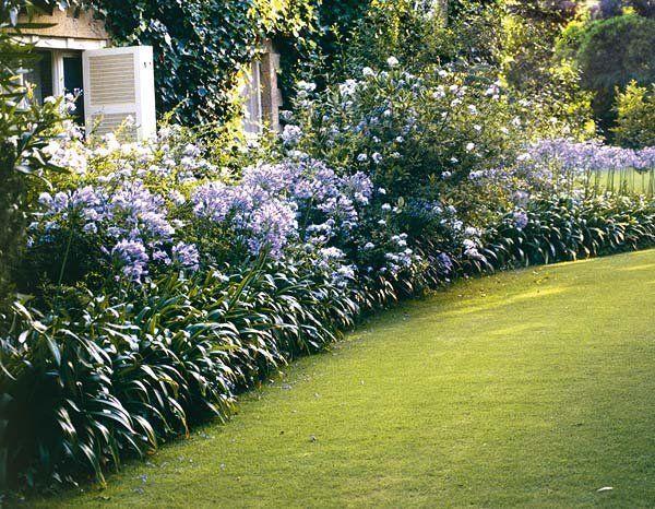 Tu jardín en un solo color