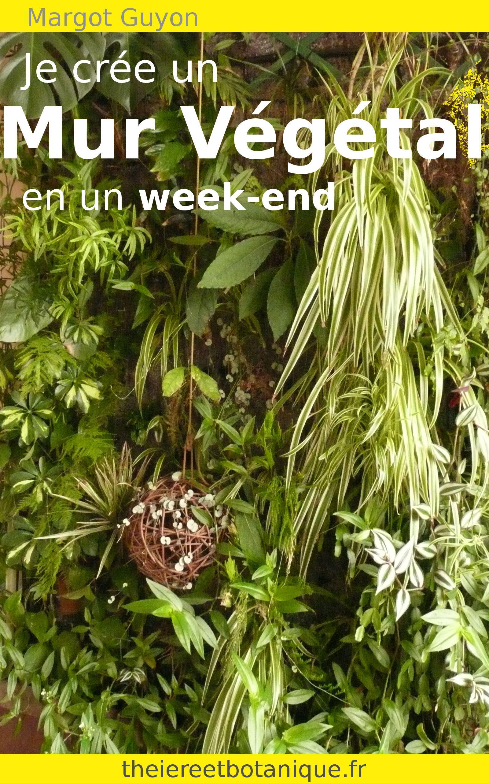 Les 25 meilleures id es de la cat gorie mur vegetal sur for Plante decorative exterieure