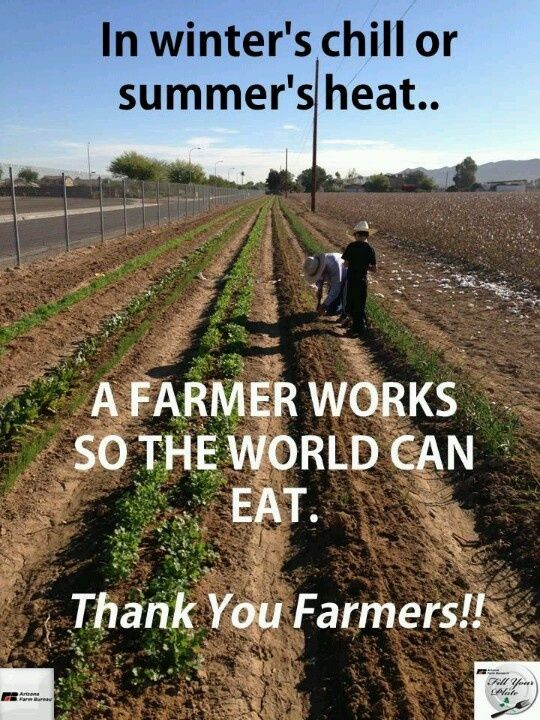 Farmer Quotes Farming Quotes For Grandpaquotesgram  Feast Or Famine  Pinterest .