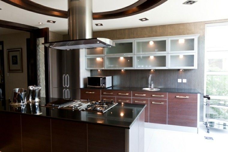Cocina moderna con isla y armarios con puertas de cristal for Puertas de cocina modernas