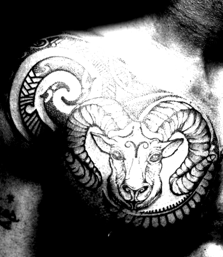 75 Aries Tattoos For Men Zodiac Ink Design Ideas. Tribal