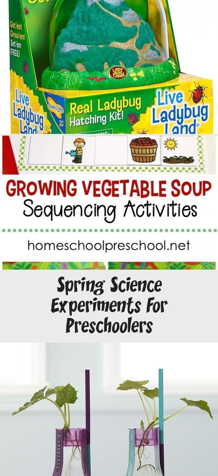 Spring Science Experiments For Preschoolers #scienceexperimentsforpreschoolers Take advantage of all the new that spring has to offer, and try as many of these preschool science experiments as you can!    #springscience #preschoolscience #scienceexperiments via @homeschlprek #scienceFondos #sciencePhotography #scienceForKids #scienceIdeas #scienceClipart #scienceexperimentsforpreschoolers Spring Science Experiments For Preschoolers #scienceexperimentsforpreschoolers Take advantage of all the new #scienceexperimentsforpreschoolers