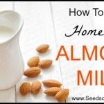 How To Make Homemade Almond Milk | Seeds of Real Health