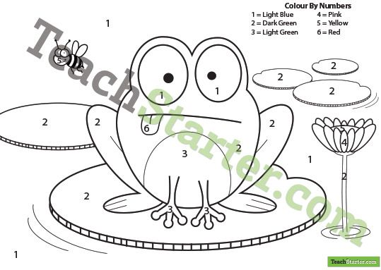 frog in a pond colour by numbers teach starter teaching resources