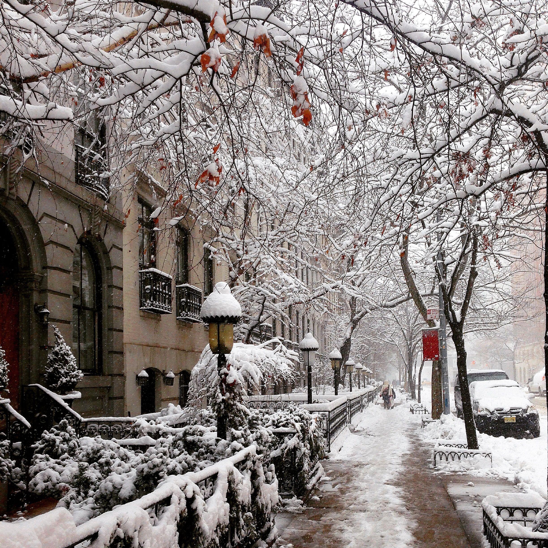 олень самые лучшие фото зимы в городе правило третей лишь