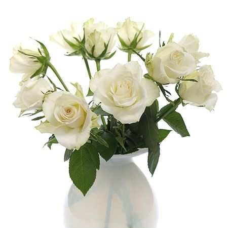 Symbolic meanings of flowers that youve been wanting to know flowers white roses flower meaning mightylinksfo Images