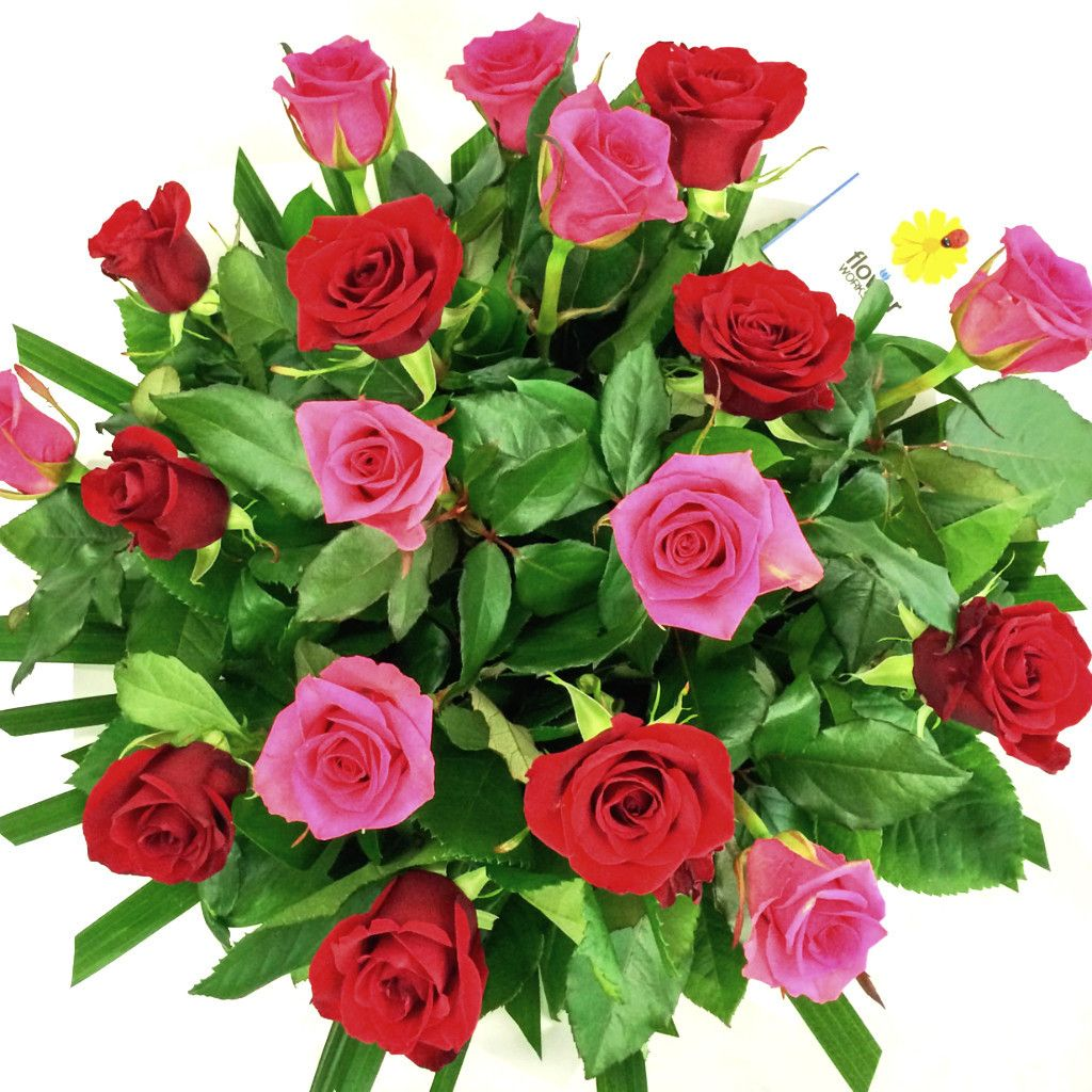 Best services at affordable prices from myflowerttree now available send flowers online to kanpur flowers delivery in kanpur florist in kanpur izmirmasajfo