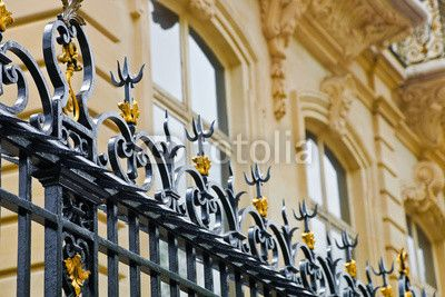 Fence and noble facade in Paris