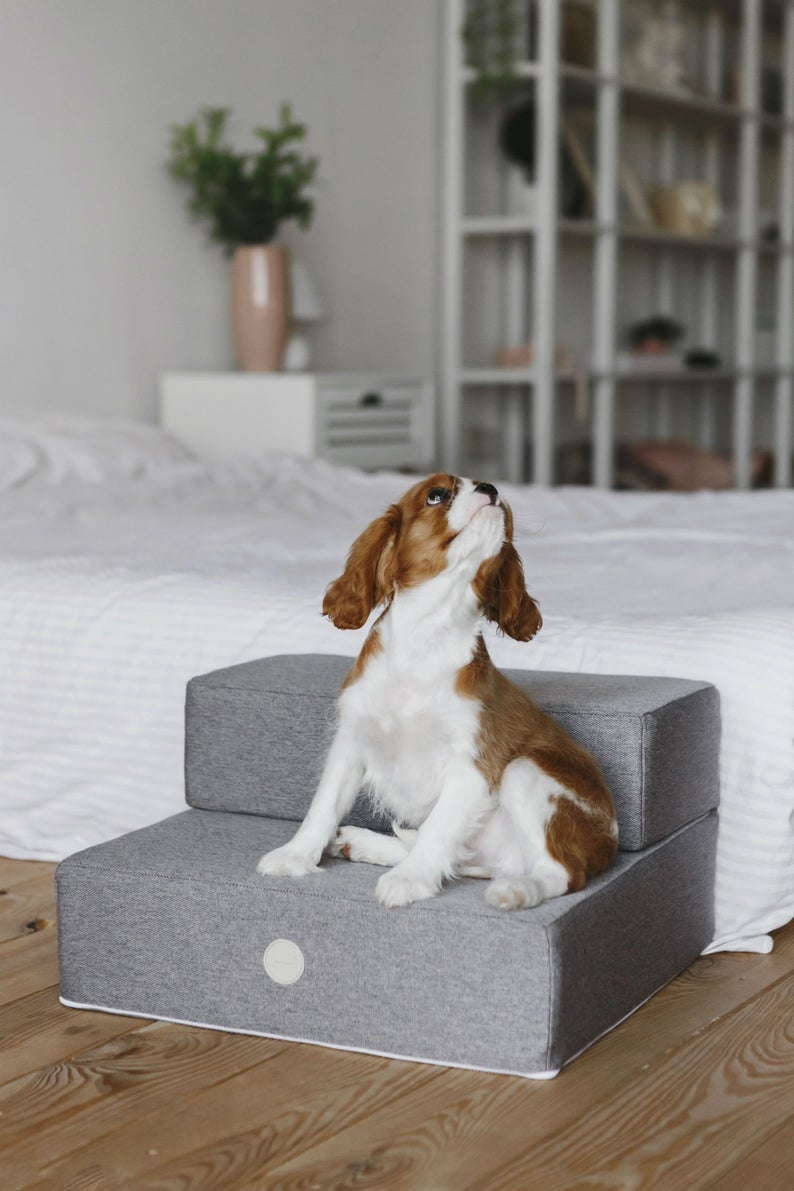 Dog Steps For Bed Pet Canvas
