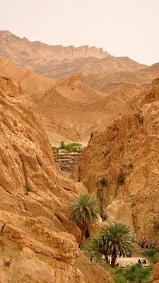 Oasis of Chebika, Djebel el Negueb mountains, Tozeur, eastern TUNISIA I Many scenes of the movie Star Wars Episode IV: A New Hope and The English Patient were shot in this area.
