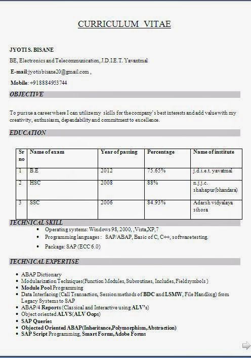 curriculum vitae template design Sample Template Example ofExcellent - Job Resume Format Download