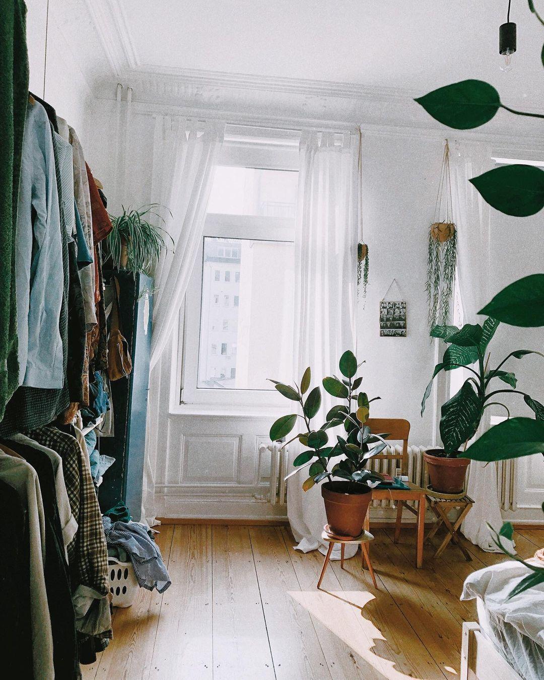 "Rigmor 🌈 on Instagram: ""Sonnenstunde. @my.bdrm #sunnyday #sunshine #interiorinspo #interior_design #homeinspiration #mybdrm #plantslover #plantsathome…"""