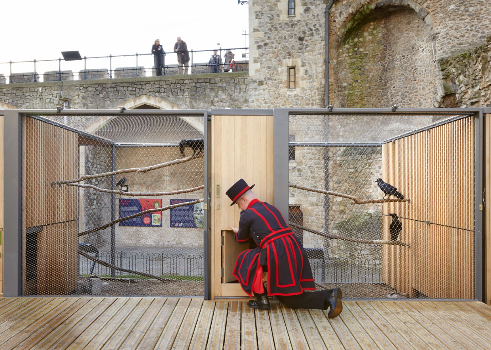 Llowarch Llowarch Architects completes raven enclosure for the Tower of London