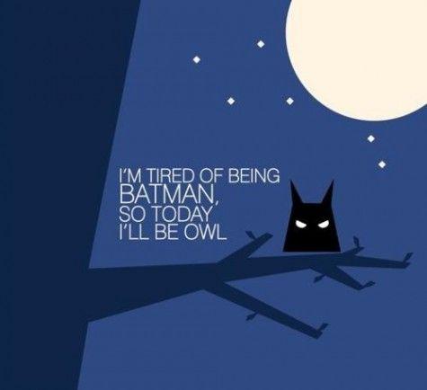 Batman   Today I'm an owl...
